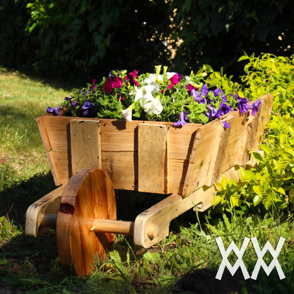 Rustic Wheelbarrow for the Garden